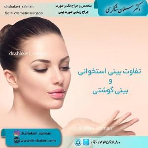 تفاوت-بینی-استخوانی-و-بینی-گوشتی